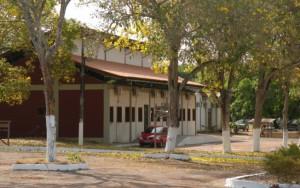 Gestão Pública e Desenvolvimento Regional - Universidade Federal do Oeste do Pará